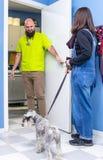 Tier?rztlich, einen Kunden mit ihrem Haustier empfangend lizenzfreies stockbild