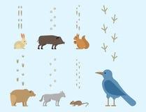 Tierabdrücke umfassen der Bahnschritte der Säugetier- und Vogelfußdruckspurnwild lebenden tiere Natur-Schattenbildvektor wilden Stockbilder
