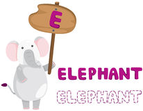 Tieralphabet e mit Elefanten Lizenzfreie Stockfotografie