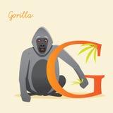 Tieralphabet mit Gorilla Lizenzfreie Stockfotos