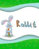Tieralphabetbuchstabe R und Kaninchen vektor abbildung