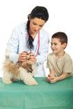 Tierarzt überprüfen Welpenmund lizenzfreie stockbilder