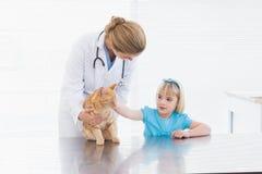 Tierarzt, der eine Katze hält Stockbilder