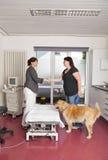 Tierarzt, der Hände mit Hundonwer rüttelt Stockfoto