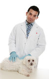 Tierarzt mit krankem Haustier stockbilder