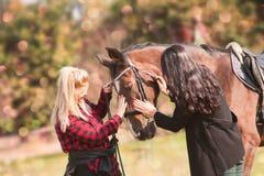 Tierarzt und Inhaber mit einem Pferd lizenzfreies stockbild