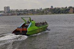 Tierboot Lizenzfreies Stockbild