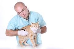 Tierdoktor Stockfotografie