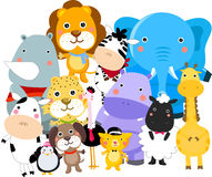 Tiere Stockfoto