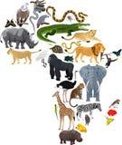 Tiere Afrika - Vektorillustration lokalisiert Stockfoto