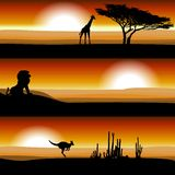 Tiere auf der Savanne bei Sonnenuntergang Lizenzfreie Stockbilder