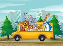 Tiere auf Schulbus Stockbilder
