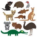 Tiere Australien: Kakadupapagei Wombatkrokodil-Kängurudingo tasmanischer Teufel echidna-Schnabeltierstrauß Emus Vektor Stockfotografie