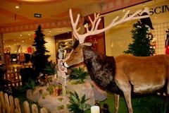 Tiere, der Zoo mit Plüschtieren auf Ausflug in Italien Lizenzfreies Stockfoto