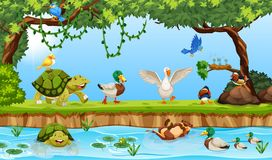Tiere in einer Teichszene lizenzfreie abbildung
