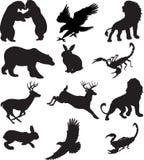 Tiere eingestellt Stockbilder
