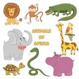 Tiere eingestellt Afrikanische Tiersammlung mit Krokodil, Schildkröte, Schlange, Löwe, Flusspferd, Elefant, Affe, Papagei, Giraff Stockfotos