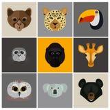 Tiere färben Ebene eingestellt auf Farbhintergrund Lizenzfreies Stockfoto