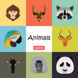 Tiere färben Ebene eingestellt auf Farbhintergrund Lizenzfreies Stockbild