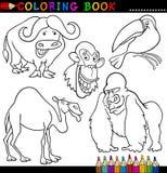 Tiere für Farbton-Buch oder Seite Stockfotografie
