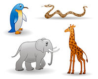 Tiere: Pinguin, Giraffe, Schlange, Elefant Stockfotografie