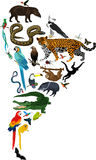 Tiere Südamerika - Vektorillustration Stockfoto