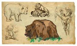Tiere, Thema: BÄREN - Hand gezeichneter Vektorsatz stock abbildung