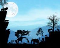 Tiere von Afrika Stockfotos