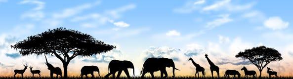 Tiere von Afrika vektor abbildung