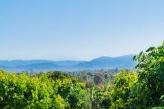 Tiered bergketens in afstand voorbij boomgaarden van noordelijk T Royalty-vrije Stock Foto's