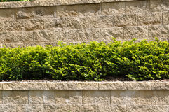 Tiered Retaining Wall Royalty Free Stock Images