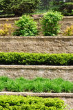 Tiered Retaining Wall royalty free stock photography