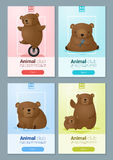 Tierfahne mit Bären für Webdesign Lizenzfreie Stockfotografie