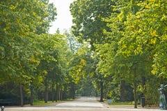Tiergarten (животный сад), Берлин, Германия Стоковое Изображение RF