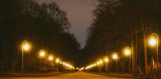Tiergarten Arkivfoton
