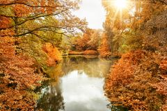 The Tiergarten in Berlin, Germany Stock Photography