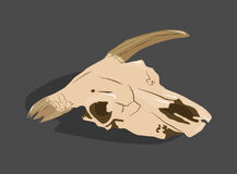 Tierhauptknochen, Scull vektor abbildung