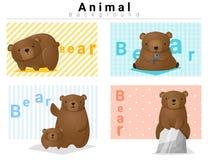 Tierhintergrund mit Bären 2 Lizenzfreies Stockfoto