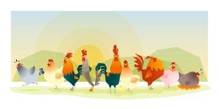 Tierhintergrund mit Hühnern Stockbild