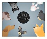 Tierhintergrund mit Hunden Lizenzfreies Stockfoto