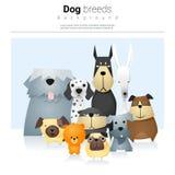 Tierhintergrund mit Hunden 2 Stockbild