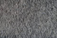 Tierische graue Pelz-Beschaffenheit Stockbild
