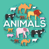 Tierisches rundes Konzept des Löwes, Affe, Affe, Kamel, Elefant, Kuh, Schwein, Schaf Vektorillustrations-Hintergrunddesign Lizenzfreie Stockfotos