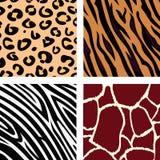 Tiermuster - Tiger, Zebra, Giraffe, Leopard Lizenzfreie Stockfotos