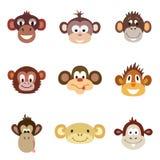 Tierporträt-Affe Auch im corel abgehobenen Betrag Stockfotos