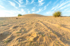 Tierra árida Foto de archivo libre de regalías