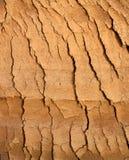 Tierra agrietada 1 Foto de archivo