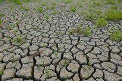 Tierra agrietada de la sequía Fotos de archivo