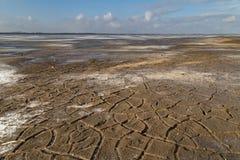 Tierra agrietada en la orilla de un lago congelado Imagenes de archivo