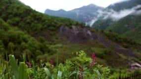 Tierra armenia de montañas foto de archivo